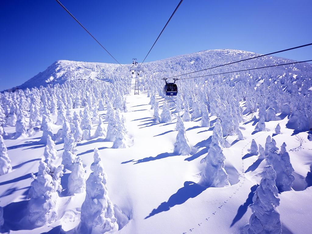 Zao Onsen Snow Resort(YAMAGATA)
