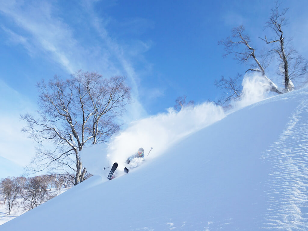NOZAWA ONSEN SNOW RESORT (NAGANO)